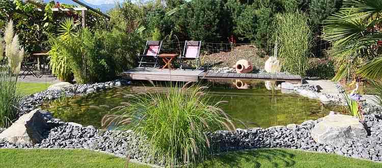 Садовый пруд с G-Sonic 10 против зеленых и плавающих водорослей