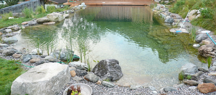 Swimming pond, natural pool with G-Sonic 20 S against green algae