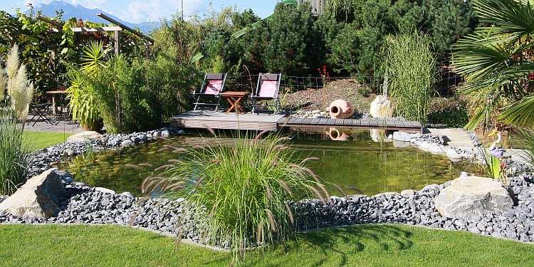 Algenfreier Gartenteich, Biotop, Badeteich - ein wunderbarer Ort im Sommer.