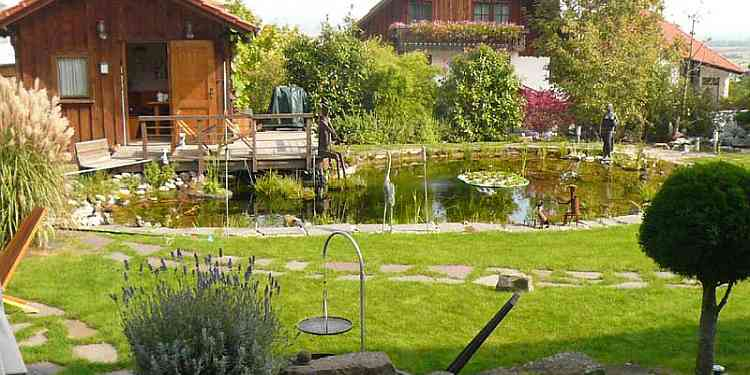 Natur koi und gartenteich nat rliche algenbek mpfung for Gartenteich ohne filter